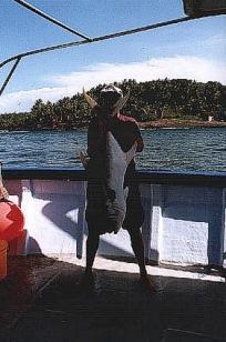 Guyane - Les Iles du Salut - 1999